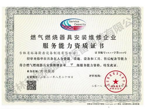 服务能力资质证书
